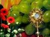 - Kliknij TU, aby zapoznać się ze zdjęciami z tej uroczystości....